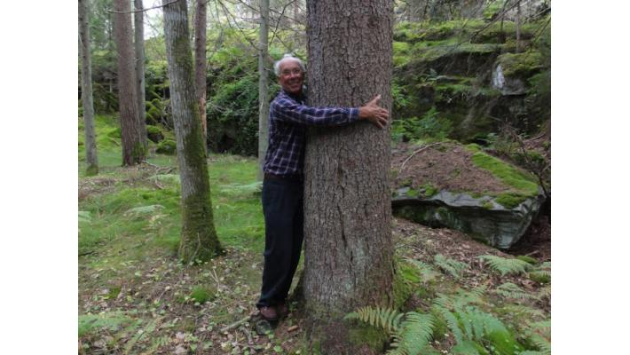 Jorgen nel bosco